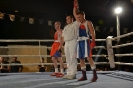 אליפות איגרוף